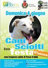 cani sciolti1