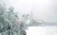 Neve & Nebbia - 1983- Amerigo Colombo