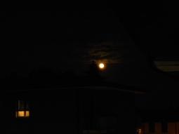 Notte Di Luna Piena - Arrigoni Raffaele