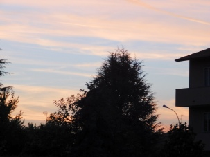 Pozzo d'Adda al tramonto- Raffaele Arrigoni
