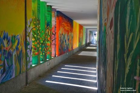 Roberta Caglioni - Pozzo D'Adda a colori