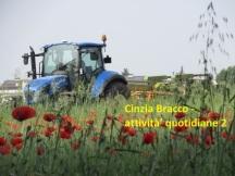 Cinzia Bracco - attività' quotidiane 2