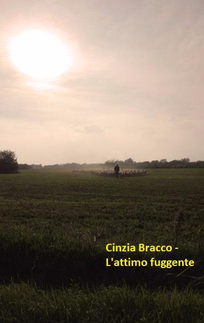Cinzia Bracco - L'attimo fuggente