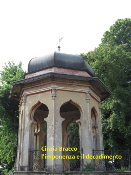 Cinzia Bracco - l'imponenza e il decadimento