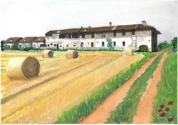 Dell'Acqua- Ricordo mietitura Cascina Morosin